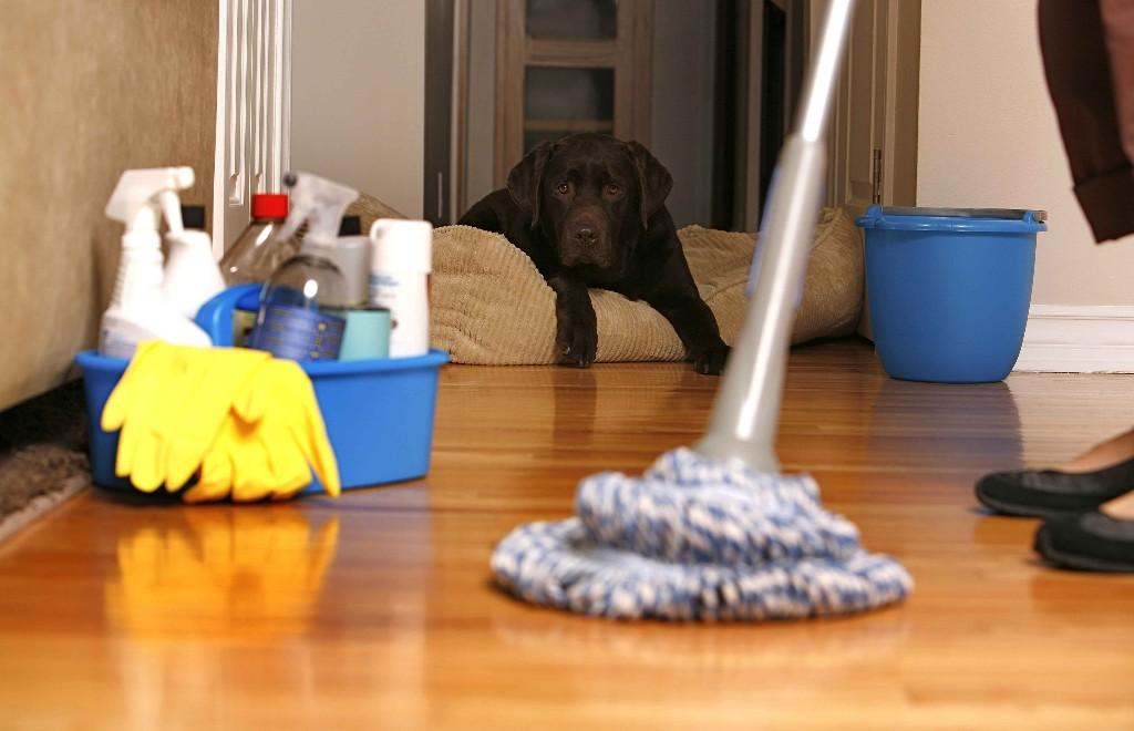House-Cleaning-Adelaide