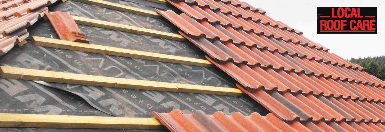 roof repairs service