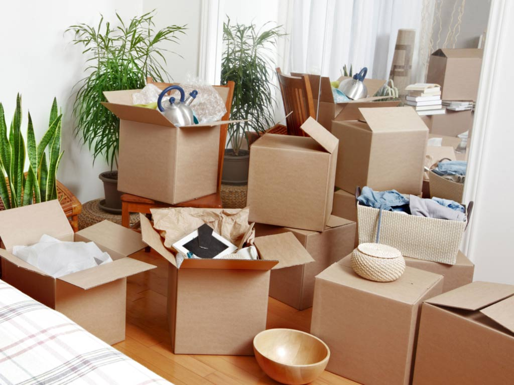 Image result for Hire Furniture Removalists